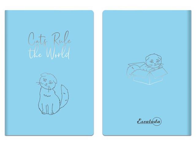 """Записная книжка А6+ 60 листов Феникс+ """"Escalada. Голубой"""" прозрачный пвх, мягкий переплет"""