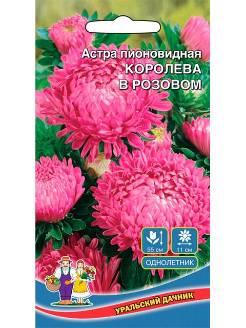 Астра Королева в розовом, пионовидная, ц/п, 0,25 г, серия Уральская усадьба