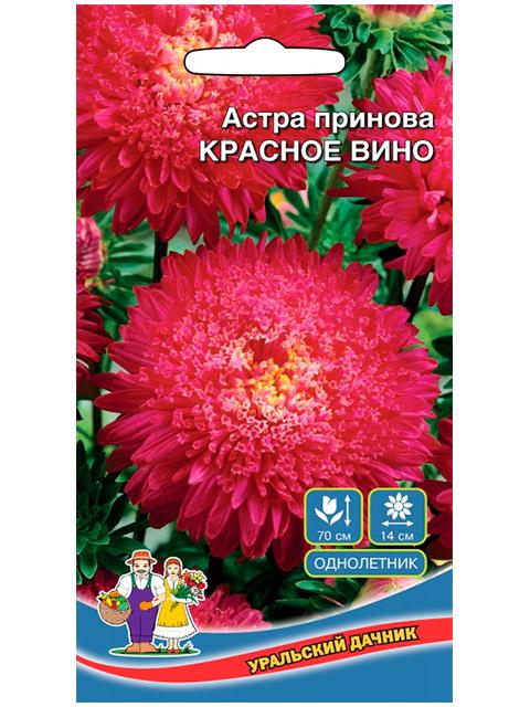 Астра принова Красное вино, ц/п, 0,25 г. Уральский дачник