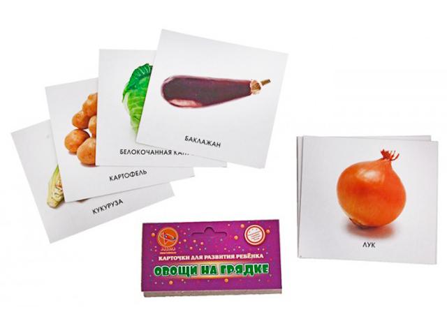 "Карточки для развития ребенка ""Ракета. Овощи на грядках"""