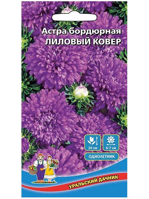 Астра Лиловый ковер, бордюрная, 0,4г, ц/п, Уральский дачник