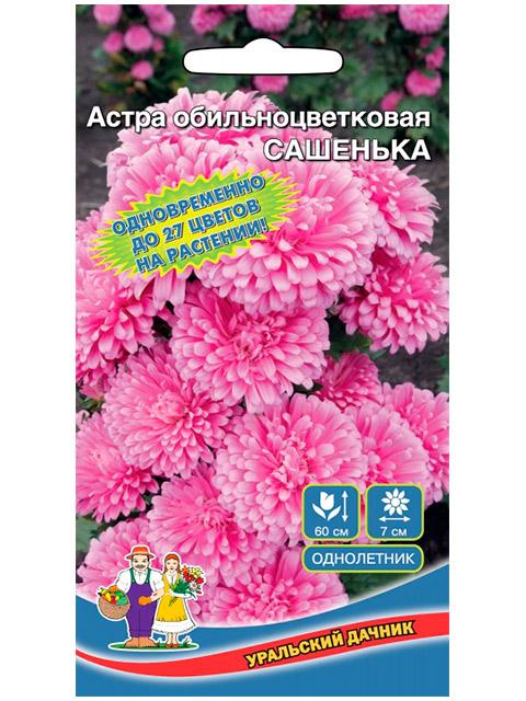 Астра Сашенька, обильноцветущая ц/п, 0,2 г. Уральский дачник