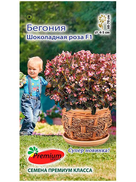 Бегония Шоколадная роза F1, ц/п, 5 штук