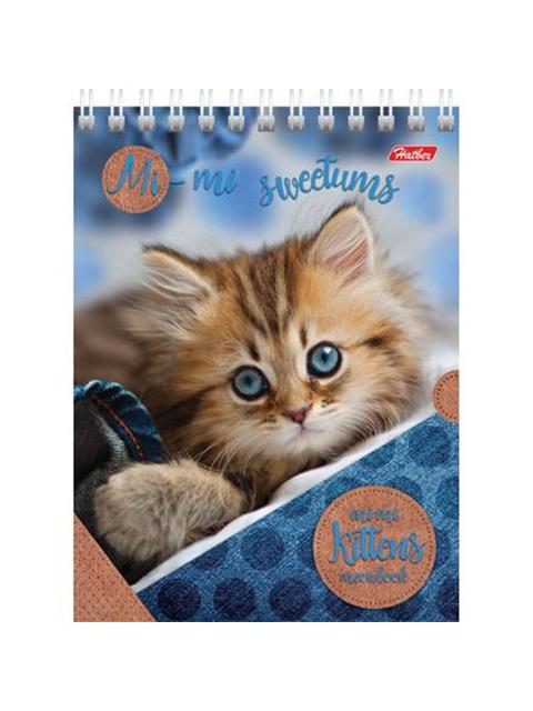 """Блокнот А6 40 листов Хатбер """"Милые котята"""" на гребне"""