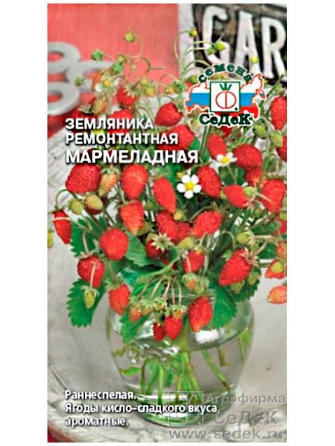 Земляника Мармеладная, ремонтантная, ц/п, 0,04г