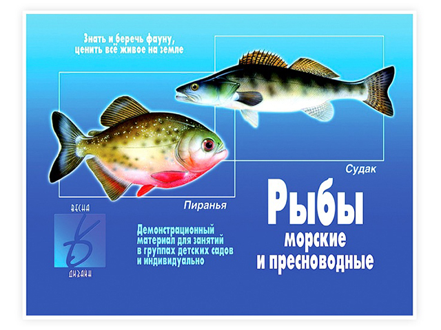 """Карточки развивающие А4 """"Рыбы морские и пресноводные"""""""