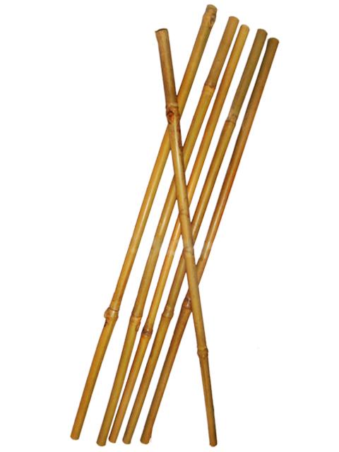 Бамбуковая опора - 60 см (D 8-10 мм)