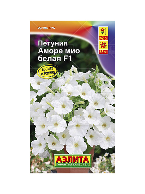 Петуния Аморе Мио F1, белая, ц/п, 7 штук