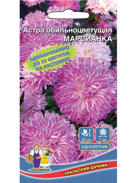 Астра Марсианка, обильноцветущая, ц/п, 0,2 г. Уральский дачник