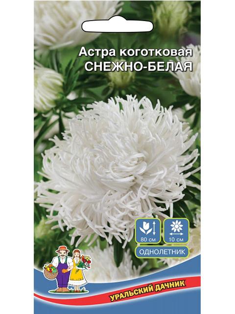 Астра Снежно-Белая, коготковая ц/п, 0,25 г. Уральский дачник