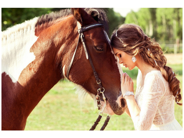 """Рисование по номерам Рыжий кот """"Девушка с лошадью"""" 40х50 см"""