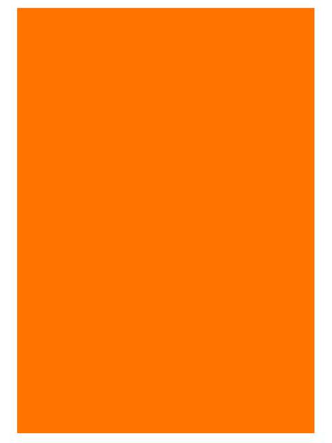 """Бумага цветная для офисной техники Удмуртполиграфия А4 80г/кв.м 100 листов Интенсив """"Оранжевый"""""""