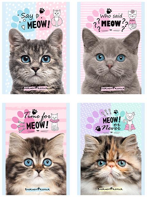 "Блокнот А6 32 листа Проф-Пресс ""Голубоглазые котята"" на скрепке"