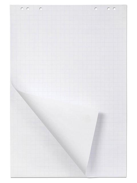 Блок для флипчарта 20 листов Хатбер 64*96, в клетку