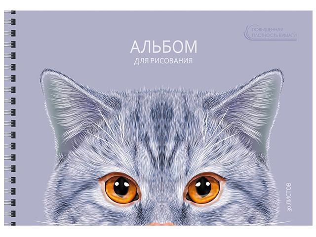 """Альбом для рисования А4 30 листов Unnika """"Кошачьи истории"""" на гребне"""
