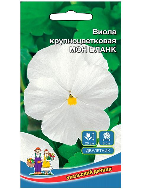 Виола Мон Бланк, крупноцветковая, ц/п