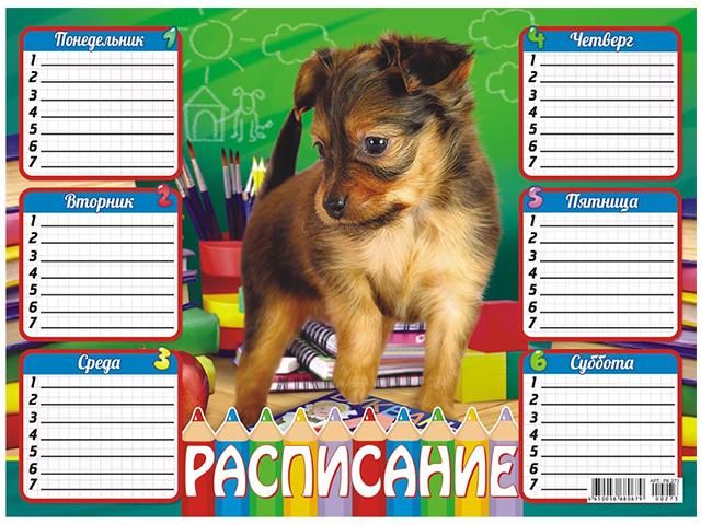 """Расписание уроков А4 """"Милый песик"""""""