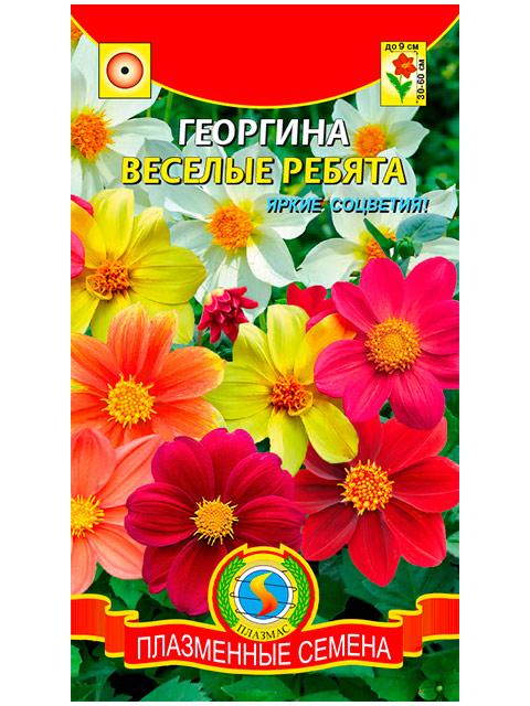 Георгина Веселые ребята, ц/п 0,15г Плазмас