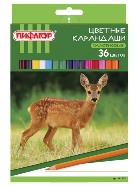 """Карандаши цветные Пифагор """"Лесные жители"""", 36 цветов, пластиковые, заточенные, картонная упаковка"""
