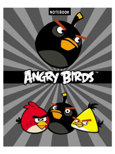 """Бизнес-блокнот А5 80 листов Хатбер """"Angry Birds"""" обложка 7БЦ"""