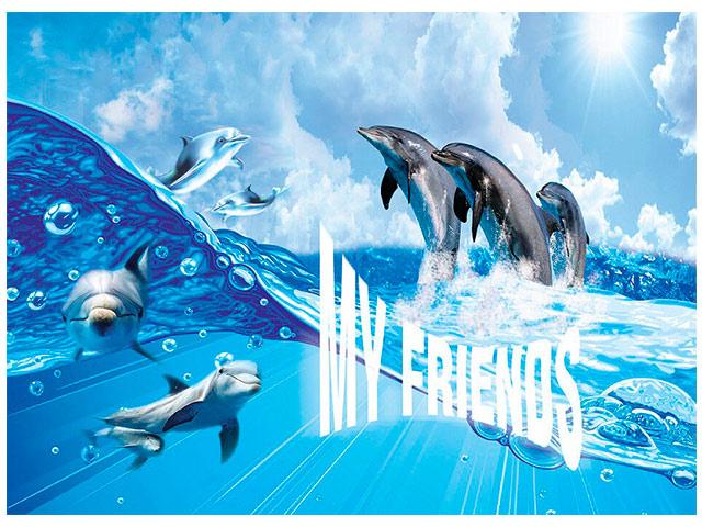 """Папка для труда А4 Канцбург """"Дельфины"""" 2 отделения, на молнии"""