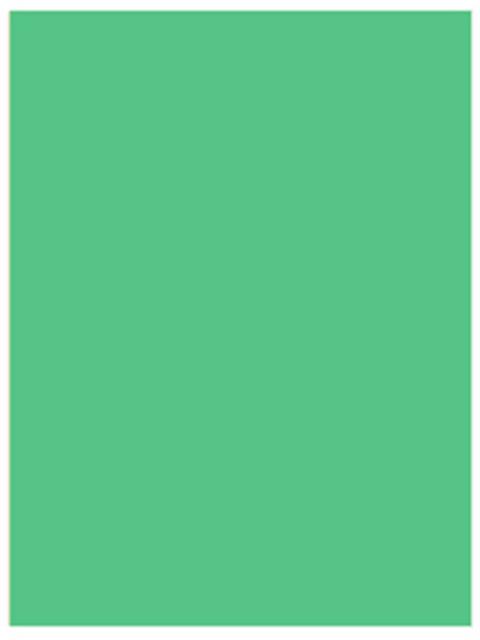 """Бумага цветная для офисной техники Удмуртполиграфия А4 80г/кв.м 250 листов Пастель """"Салатовый"""""""