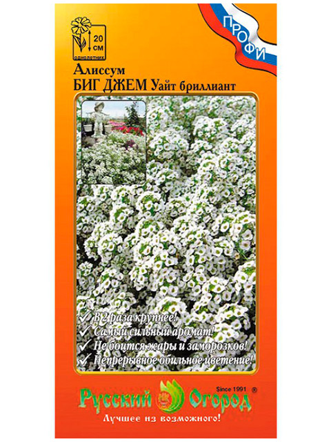 Алиссум Биг Джем Уайт бриллиант ц/п, 50шт, Русский огород