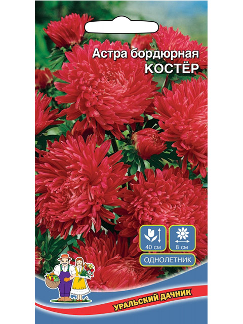 Астра Костер, бордюрная, ц/п, 0,25г. Уральский дачник