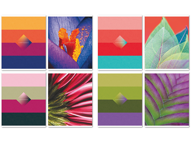 """Тетрадь А5 96 листов клетка БиДжи """"Color evolution"""" двойная обложка, перевертыш, на евроспирали"""