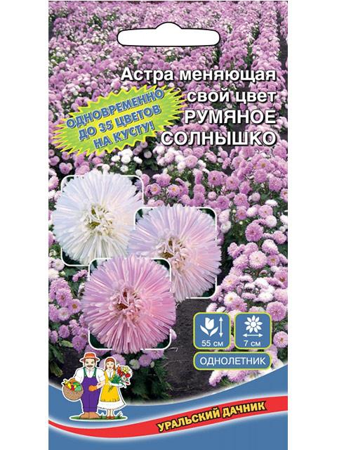 Астра Румяное солнышко (меняющая свой цвет), ц/п, 0,2 г. Уральский дачник
