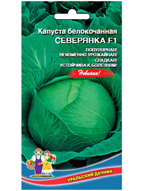 Капуста Северянка F1 белокочанная Уральский дачник, ц/п