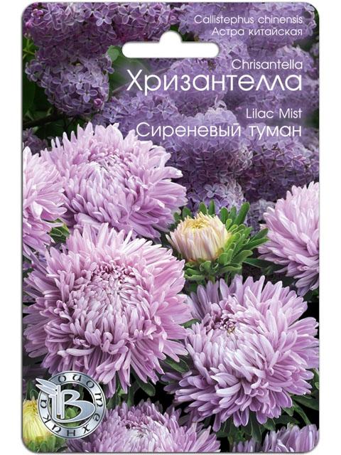 Астра китайская Хризантелла, Сиреневый туман, ц/п