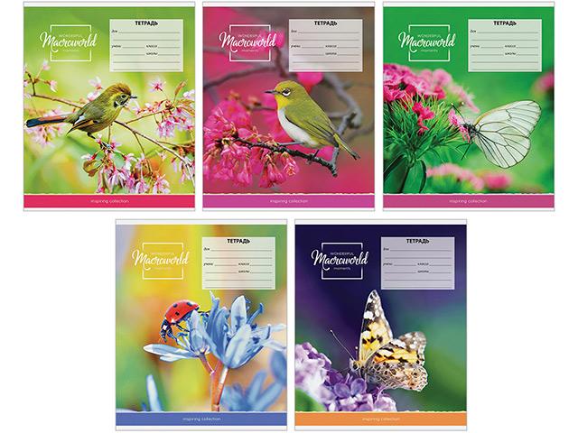 """Тетрадь А5 18 листов, клетка ArTSpace """"Природа. Macroworld"""" обложка мелованный картон"""