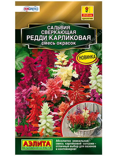 Сальвия сверкающая Редди карликовая, смесь окрасок, ц/п, 7 штук
