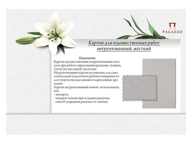 Картон художественный негрунтованный Лилия Холдинг, 200х300х1,5 мм, в упаковке 5 шт.