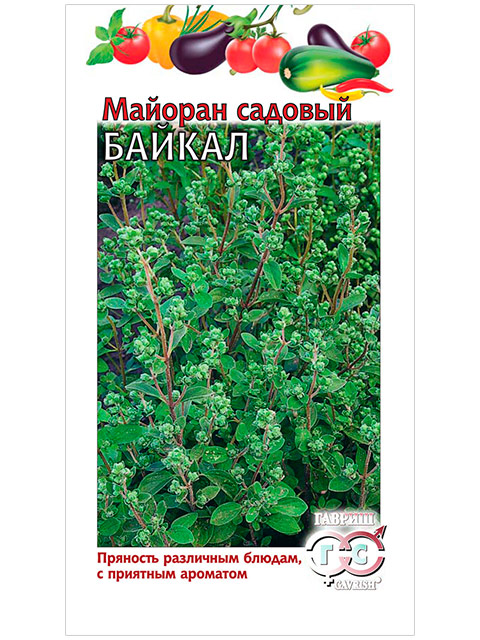 Майоран садовый Байкал, 0,1 г (ц/п) R