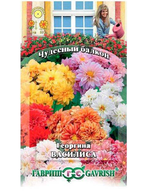 Георгина Василиса, 0,3 г, ц/п, серия Чудесный балкон