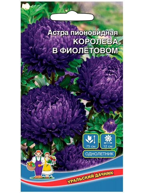 Астра Королева гигантов в фиолетовом, пионовидная, ц/п, 0,3г
