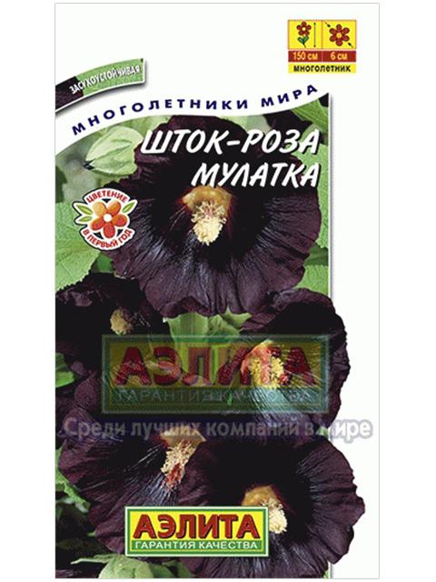Шток-роза Мулатка, ц/п R