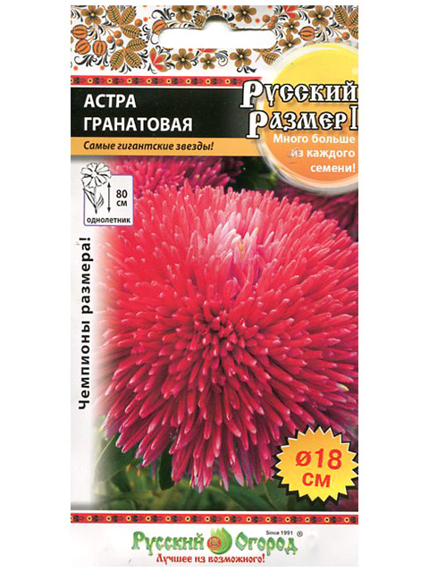 Астра Гранатовая Русский размер II ц/п, 0,2г