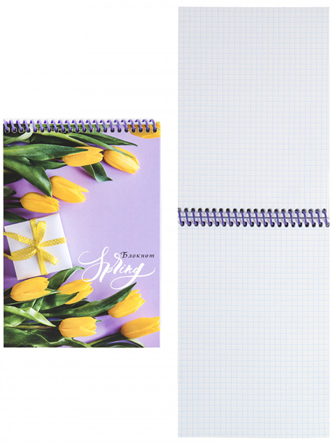 """Блокнот А5 48 листов клетка Проф-Пресс """"Весенний подарок"""" на цветной спирали"""