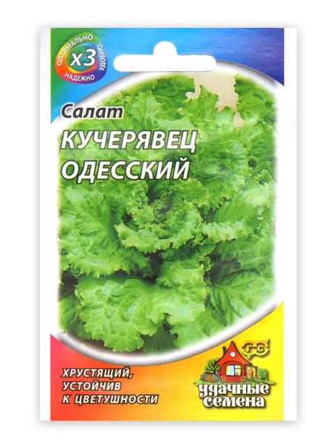 Салат Кучерявец Одесский, 0,5 г, хрустящий, ХИТ х3 R