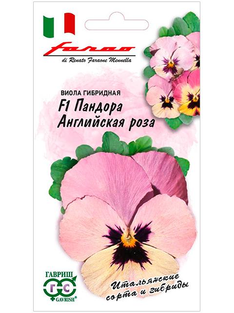 Виола Пандора Английская роза F1 (гибридная) 5шт, ц/п