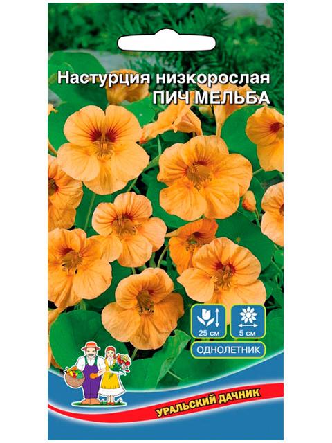 Настурция Пич Мельба, низкорослая ц/п, 1г Уральский дачник