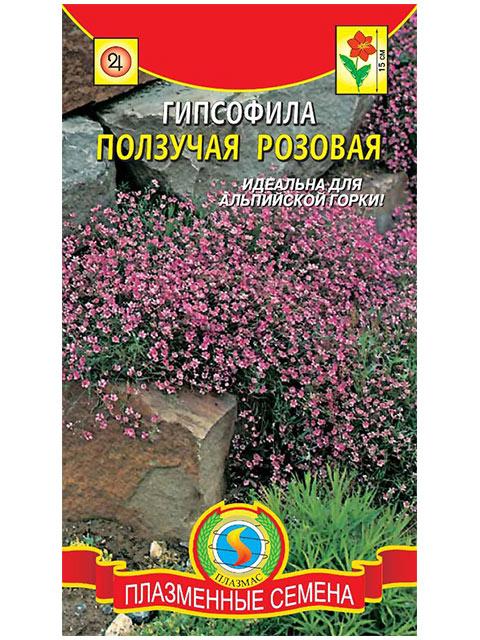 Гипсофила Ползучая Розовая, ц/п